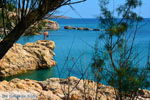 Strand Megalo Fanaraki Moudros Limnos (Lemnos) | Foto 39 - Foto GriechenlandWeb.de
