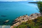 Strand Megalo Fanaraki Moudros Limnos (Lemnos) | Foto 42 - Foto GriechenlandWeb.de