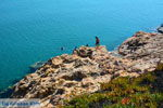 Strand Megalo Fanaraki bij Moudros Limnos (Lemnos) | Foto 43 - Foto van De Griekse Gids