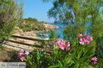 Strand Megalo Fanaraki bij Moudros Limnos (Lemnos) | Foto 82 - Foto van De Griekse Gids