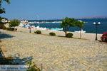 GriechenlandWeb.de Nea Koutali Limnos (Lemnos) | Griechenland foto 18 - Foto GriechenlandWeb.de