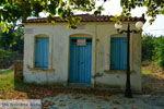 Pedino Nea Koutali Limnos (Lemnos) | Foto 4 - Foto GriechenlandWeb.de