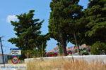 Platy Limnos (Lemnos) | Griekenland foto 8 - Foto van De Griekse Gids