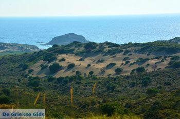 Bij Gomati en woestijn Amothines Katalakos Limnos (Lemnos) foto 4 - Foto van De Griekse Gids