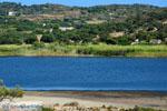 JustGreece.com Chivadolimni Milos | Cycladen Griekenland | Foto 14 - Foto van De Griekse Gids