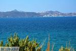 GriechenlandWeb.de Chivadolimni Milos | Kykladen Griechenland | Foto 33 - Foto GriechenlandWeb.de