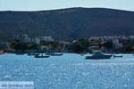 Pollonia Milos | Cycladen Griekenland | Foto 14 - Foto van De Griekse Gids