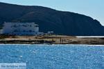 Pollonia Milos | Cycladen Griekenland | Foto 26 - Foto van De Griekse Gids