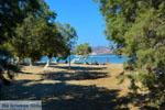 Pollonia Milos | Cycladen Griekenland | Foto 36 - Foto van De Griekse Gids