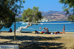 Pollonia Milos | Cycladen Griekenland | Foto 37 - Foto van De Griekse Gids
