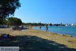 Pollonia Milos | Cycladen Griekenland | Foto 41 - Foto van De Griekse Gids