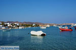GriechenlandWeb.de Pollonia Milos | Kykladen Griechenland | Foto 61 - Foto GriechenlandWeb.de