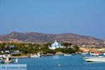 JustGreece.com Pollonia Milos | Cycladen Griekenland | Foto 62 - Foto van De Griekse Gids