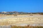 Zefyria Milos | Cycladen Griekenland | Foto 8 - Foto van De Griekse Gids