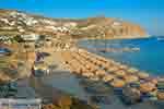 Elia beach Mykonos - Cycladen -  Foto 15 - Foto van De Griekse Gids