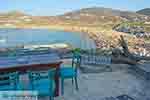 Ftelia Mykonos - Cycladen -  Foto 16 - Foto van De Griekse Gids