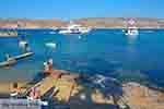 Panormos Mykonos - Cycladen -  Foto 10 - Foto van De Griekse Gids
