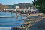 Panormos Mykonos - Cycladen -  Foto 12 - Foto van De Griekse Gids