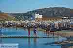 Panormos Mykonos - Cycladen -  Foto 14 - Foto van De Griekse Gids