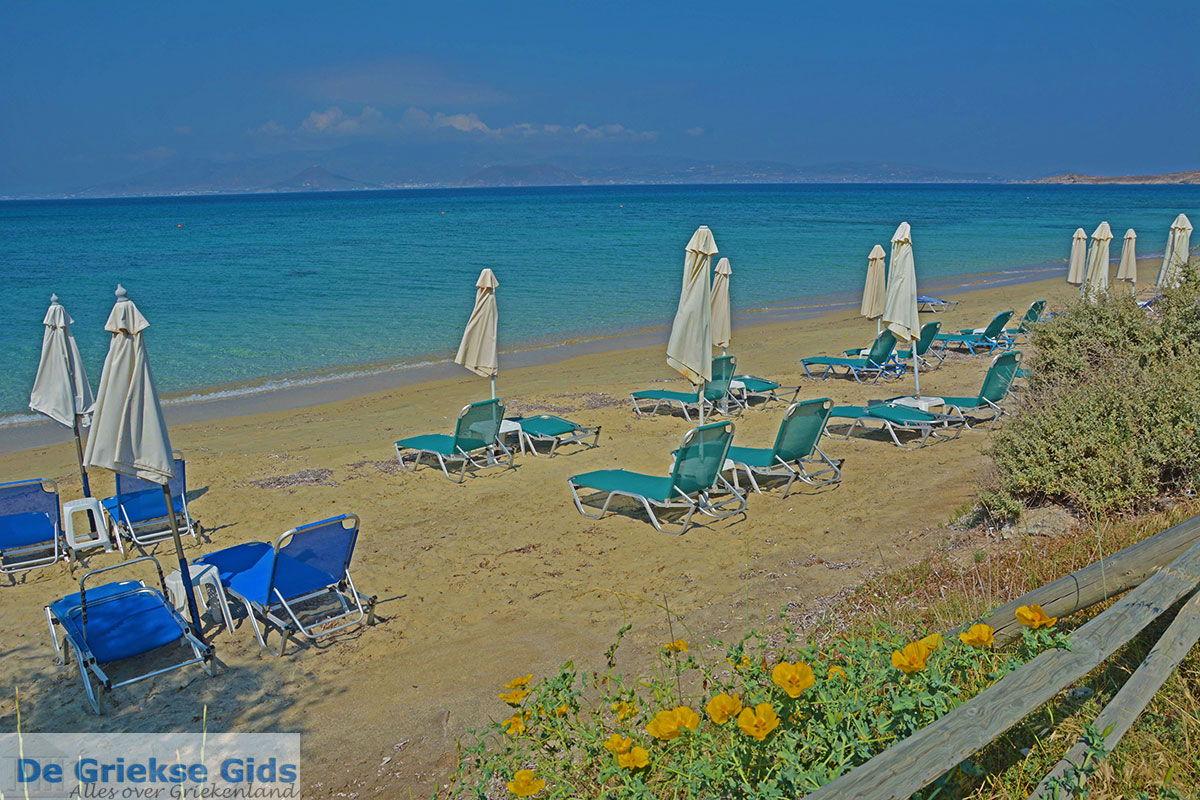 foto Agia Anna Naxos - Cycladen Griekenland - nr 4