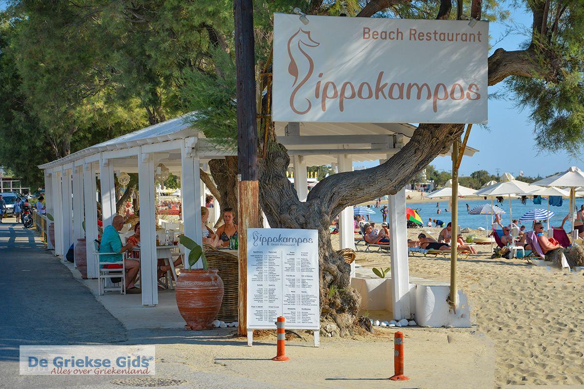 foto Foto Agios Georgios Beach - Saint George Beach Naxos 10