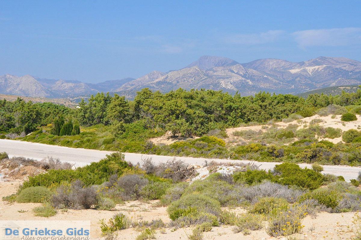 foto Alyko Naxos - Cycladen Griekenland - nr 65