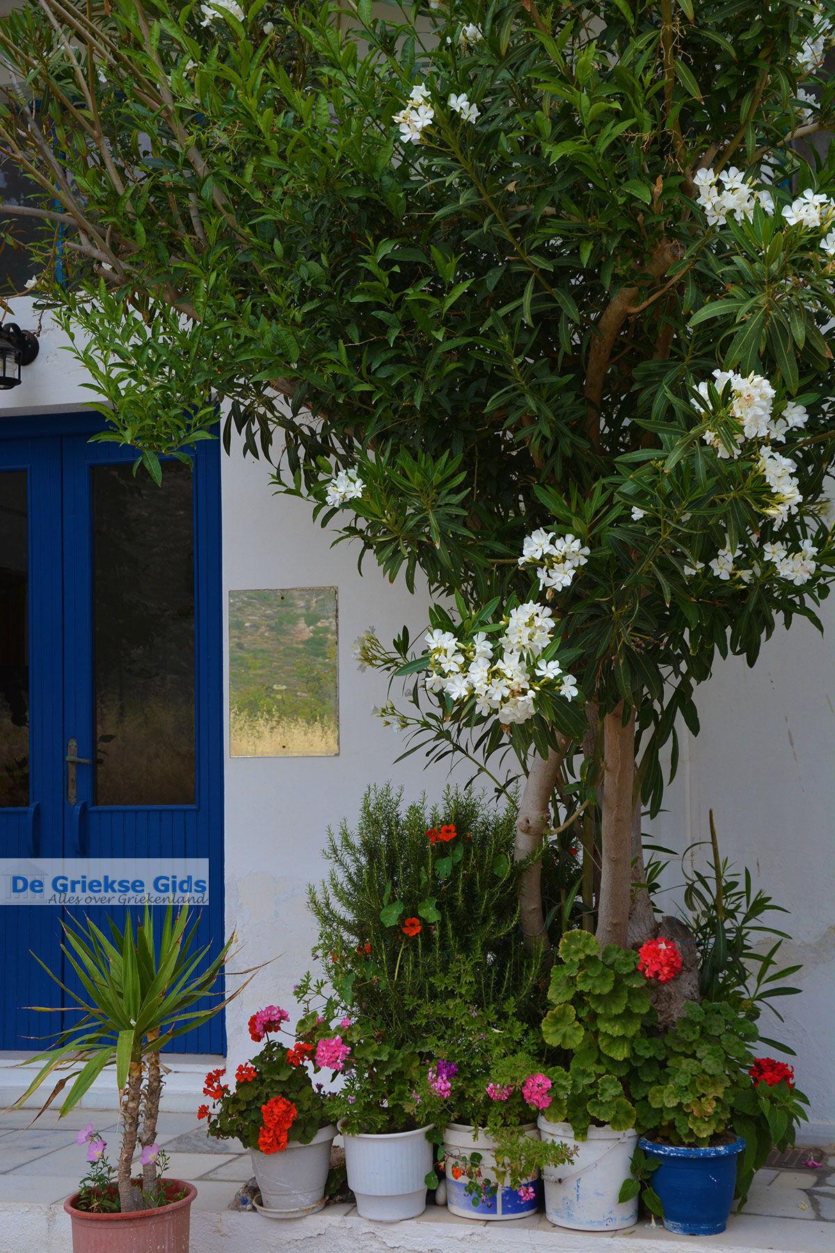 foto Apollonas Naxos - Cycladen Griekenland- nr 21