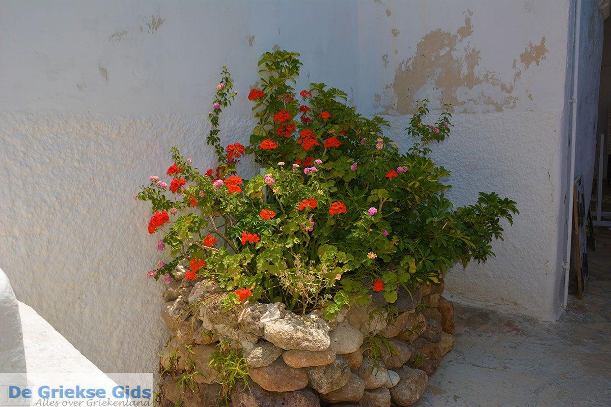 foto Naxos stad - Cycladen Griekenland - nr 121