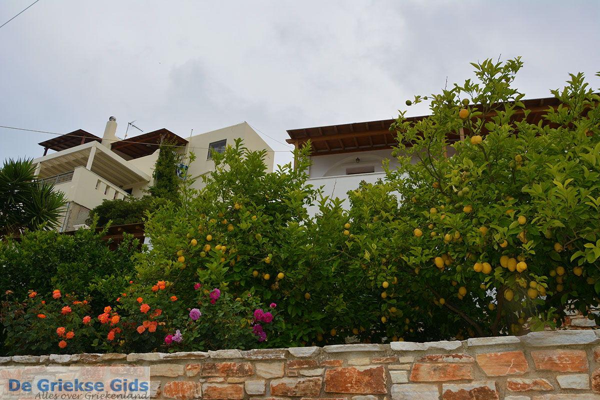 foto Potamia Naxos - Cycladen Griekenland - nr 10