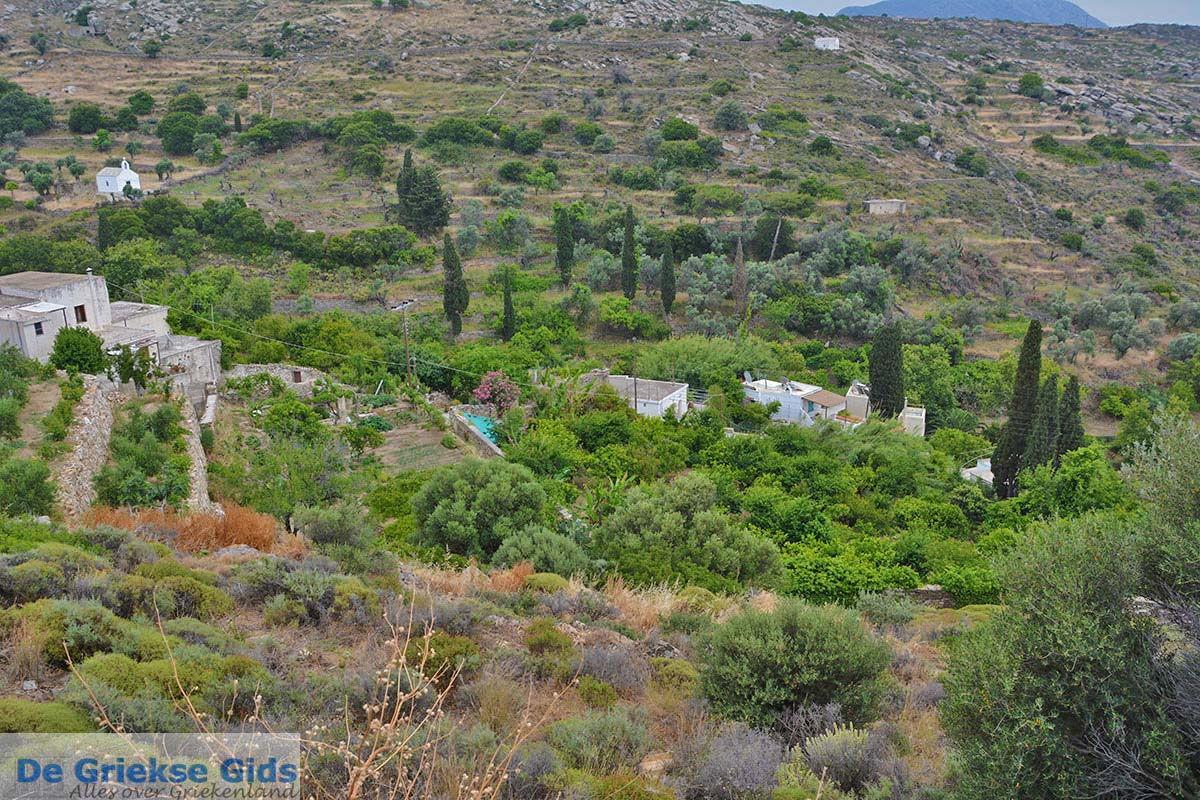 foto Potamia Naxos - Cycladen Griekenland - nr 53