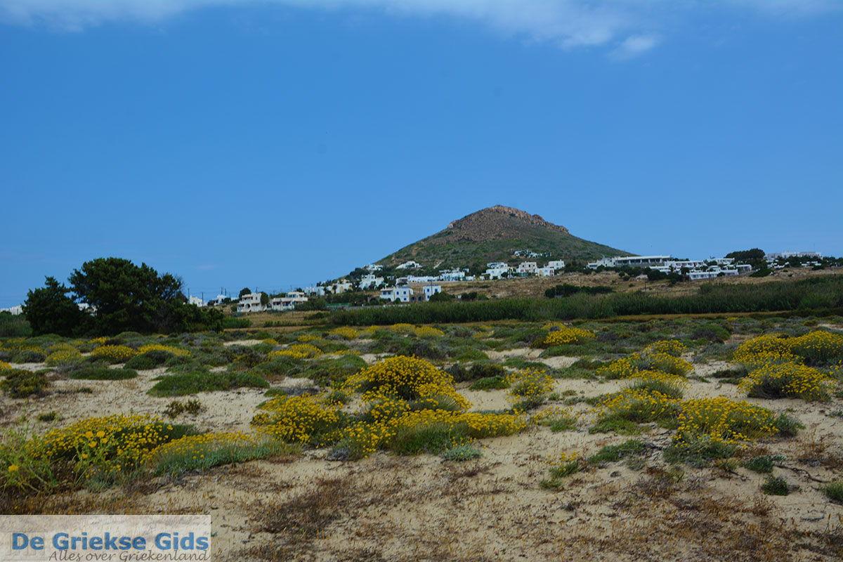foto Stelida Naxos - Cycladen Griekenland - nr  5
