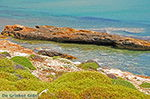Aghiassos Naxos - Cycladen Griekenland - nr 28 - Foto van De Griekse Gids