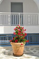 Agia Anna Naxos - Cycladen Griekenland - nr 26