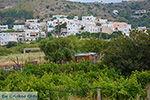 Agios Arsenios Naxos - Cycladen Griekenland - nr 4 - Foto van De Griekse Gids