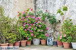 JustGreece.com Agios Arsenios Naxos - Cycladen Griekenland - nr 10 - Foto van De Griekse Gids