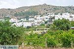 Agios Arsenios Naxos - Cycladen Griekenland - nr 15
