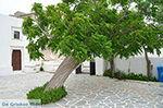 Agios Arsenios Naxos - Cycladen Griekenland - nr 26