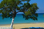 Agios Prokopios Naxos - Cycladen Griekenland - nr 26 - Foto van De Griekse Gids