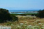 Alyko Naxos - Cycladen Griekenland - nr 71 - Foto van De Griekse Gids