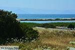 Alyko Naxos - Cycladen Griekenland - nr 73 - Foto van De Griekse Gids