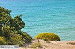 Alyko Naxos - Kykladen Griechenland - nr 76 - Foto GriechenlandWeb.de