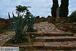 GriechenlandWeb.de Ano Sangri Naxos - Kykladen Griechenland- nr 7 - Foto GriechenlandWeb.de