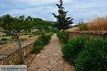 GriechenlandWeb.de Ano Sangri Naxos - Kykladen Griechenland- nr 8 - Foto GriechenlandWeb.de