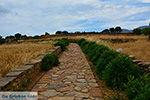 Ano Sangri Naxos - Cycladen Griekenland- nr 10 - Foto van De Griekse Gids