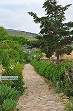 Ano Sangri Naxos - Cycladen Griekenland- nr 16 - Foto van De Griekse Gids