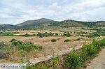 GriechenlandWeb.de Ano Sangri Naxos - Kykladen Griechenland- nr 22 - Foto GriechenlandWeb.de
