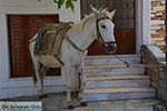 Apiranthos Naxos - Cycladen Griekenland- nr 11 - Foto van De Griekse Gids