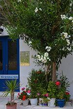 Apollonas Naxos - Cycladen Griekenland- nr 21