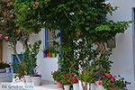 Apollonas Naxos - Cycladen Griekenland- nr 22 - Foto van De Griekse Gids