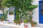 Apollonas Naxos - Cycladen Griekenland- nr 32